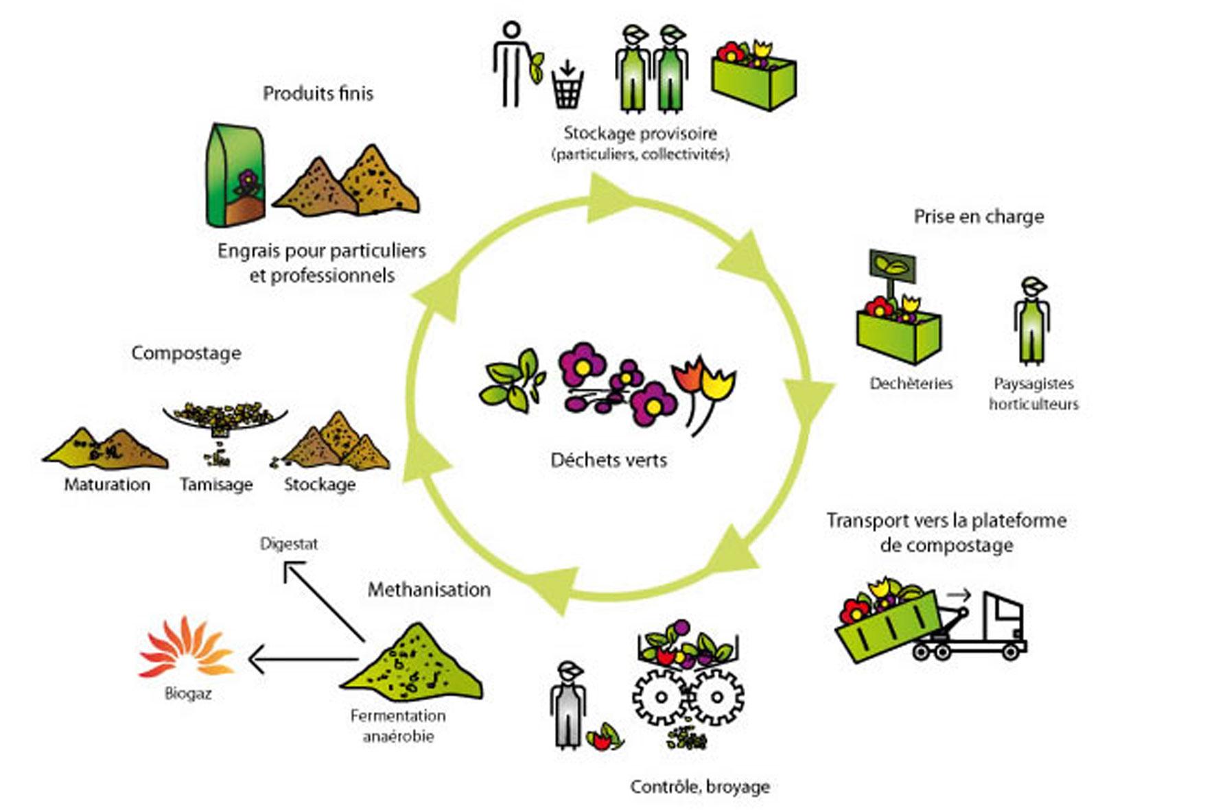 cycle-de-vie-dechets-verts
