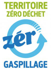 logo-zdzg